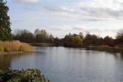 Britzer Gardens