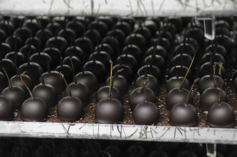 Cherries from Cadiot-Badie, the oldest and finest chocolate shop in Bordeaux