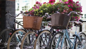 Cycle the City Tours