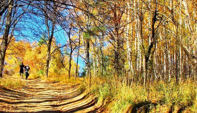 Vitosha Mountain in the autumn