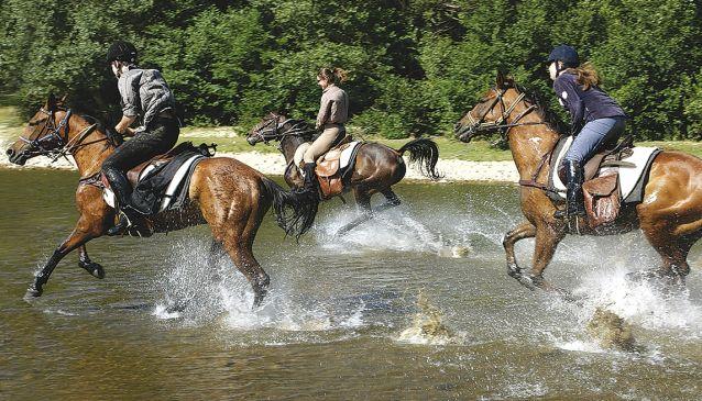 Arkan Trail Rides
