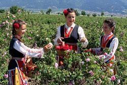 Culture and Tradition near Sofia