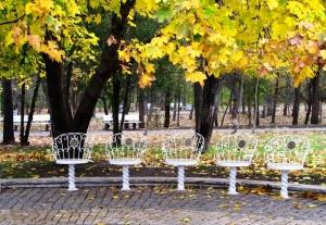 Park in Sofia - the capital of Bulgaria