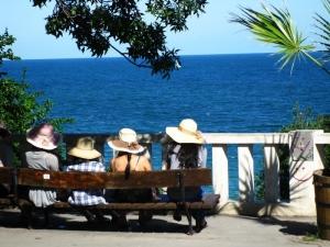 Summer in Sea Garden, Varna