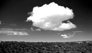 Climb Table Mountain