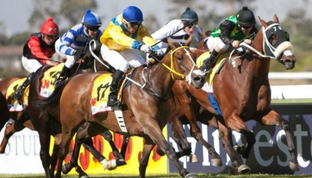 The Big 4: Cape Town's Top Sporting Events
