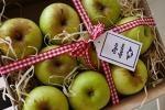 Applewood Harvest Festival