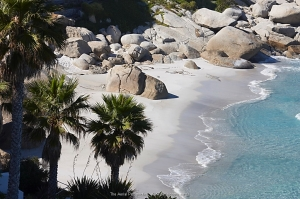 Moses Beach
