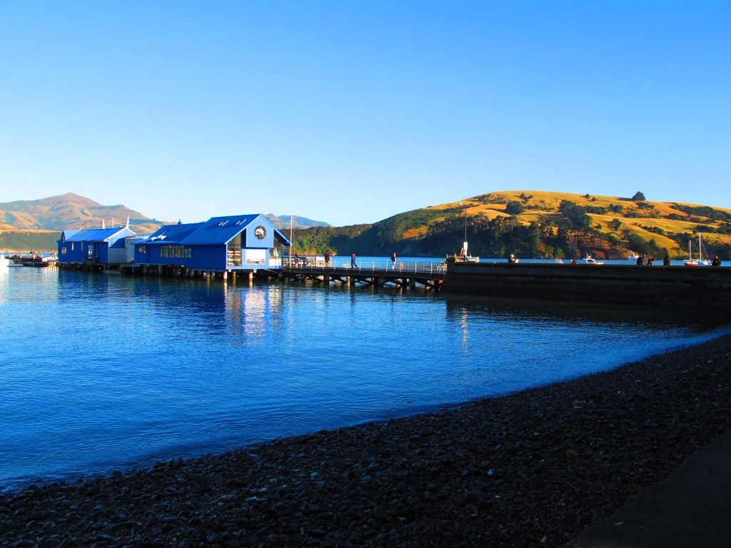 Pier, Akaroa