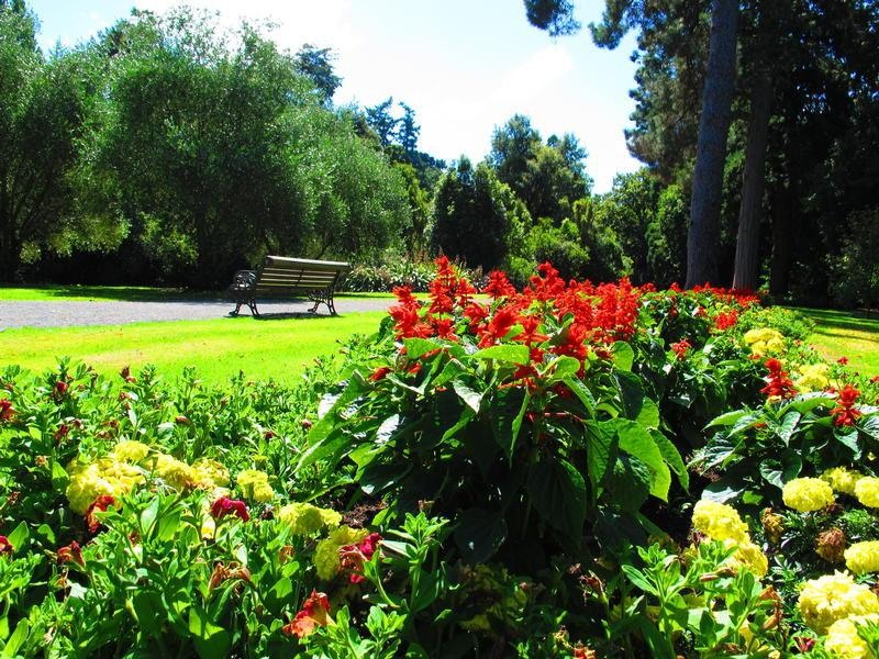 Ashburton domain and gardens in christchurch my guide for Gardening services christchurch