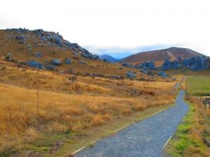 Castle Hill Scenic Reserve