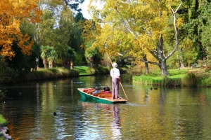 Punting on River Avon, Christchurch