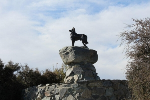 Sheepdog memorial, Lake Tekapo