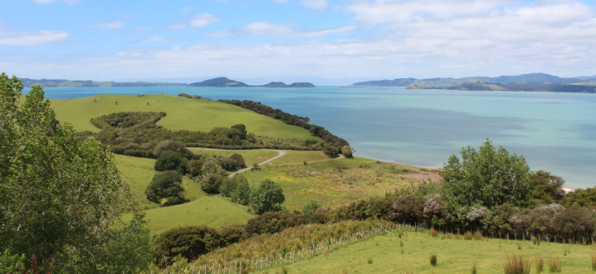 Auckland East