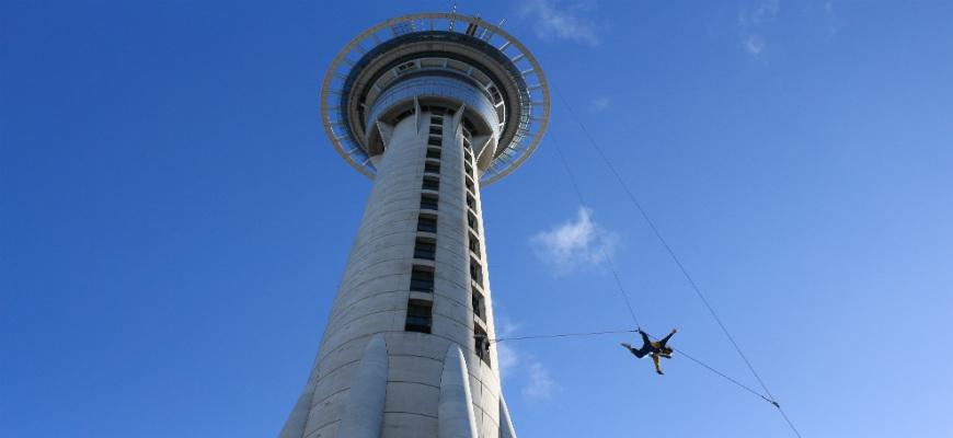 Auckland Top 10