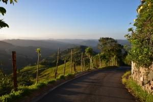 Road in Cayey, Puerto Rico