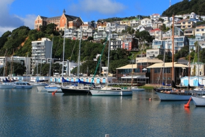 Wellington Sail Boats