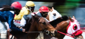 Horse Racing at The Garrison Savannah