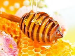 1st Honey and Beekeeping Festival in Kalopanayiotis