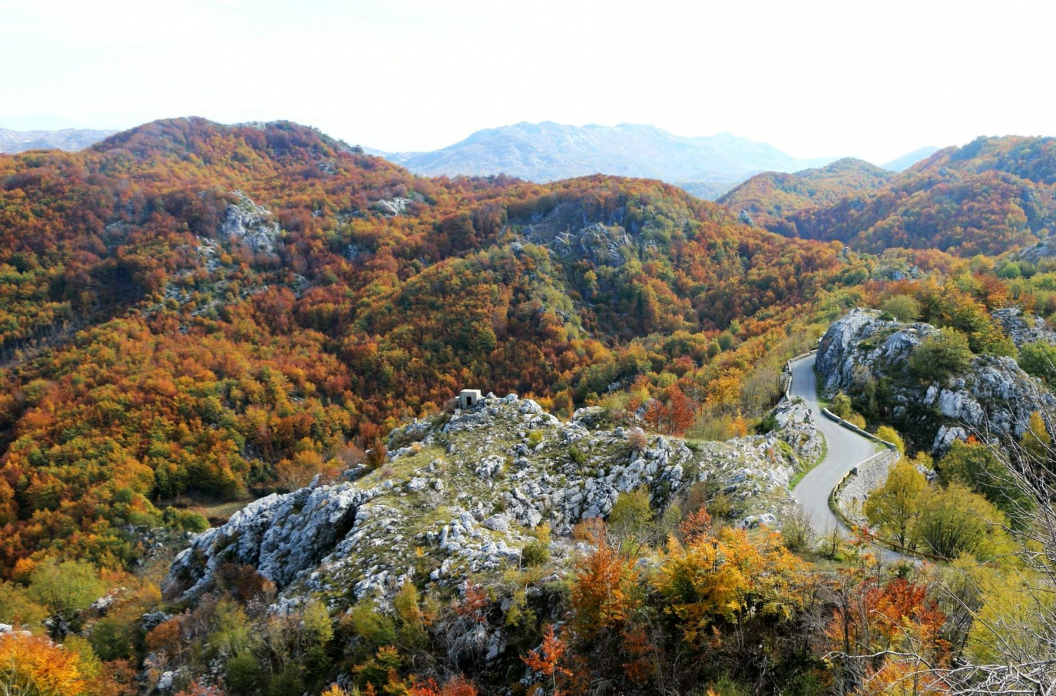 5 Things You Shouldn't Miss at Lovćen National Park