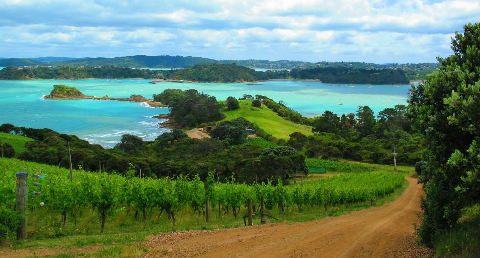 5 Waiheke Island Wineries You Need To Visit
