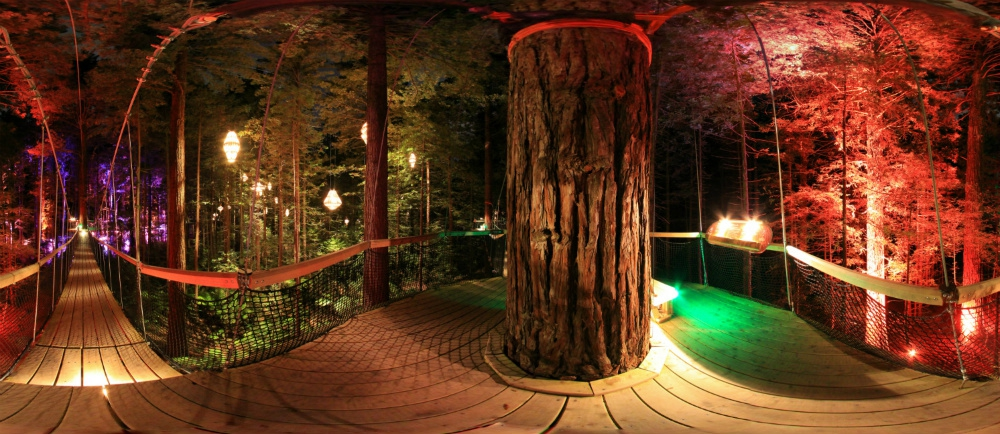 Top 5 Things To Do In Rotorua At Night
