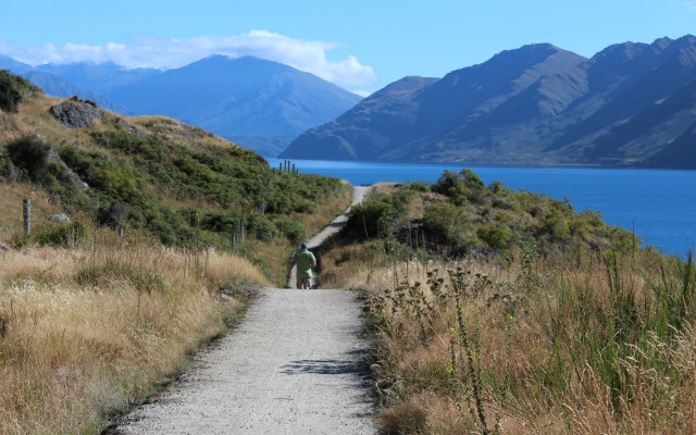 Walking In Wanaka