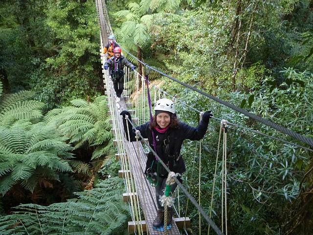 Ziplining in Rotorua