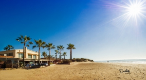 Marbella Winter Season