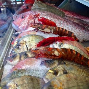 Fresh fish at Ababuja, Alvor