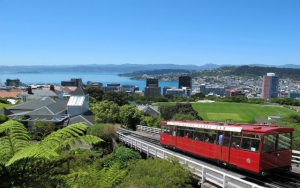 Wellington In A Day
