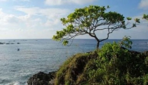 Cano Island - Isla de Cano