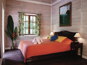 Jungle Rooms