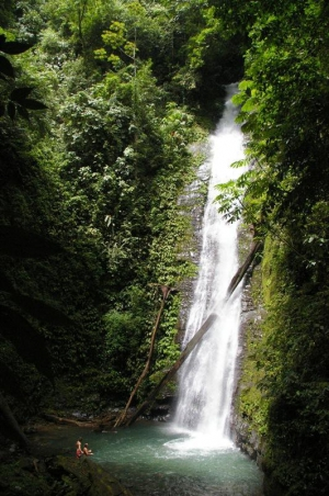 waterfall-hike-forest