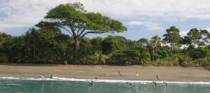Beaches - North Caribbean Region