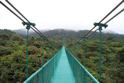Cloud Forest Region