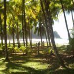 Costa Rica Province