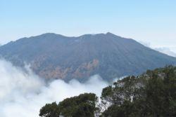 National Parks Central Valley Region