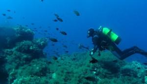 Diving Center Scuba Valdaliso