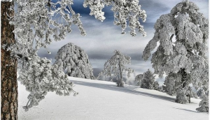 Skiing in Troodos, Cyprus