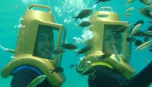 Undersea Adventures