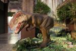 Living Dinosaurs Exhibition