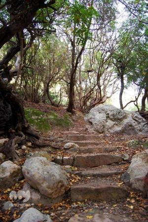 Avakas Gorge © My Destination Cyprus