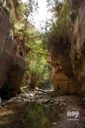 Avakas Gorge, Pafos © My Destination Cyprus