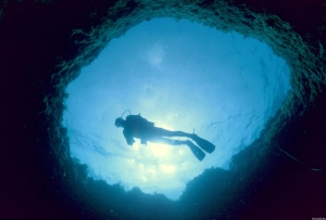 Diving at Turtle Rock, photo by CTO
