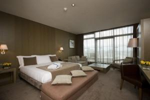 Radisson Blu Royal Hotel Dublin - Business Class Room