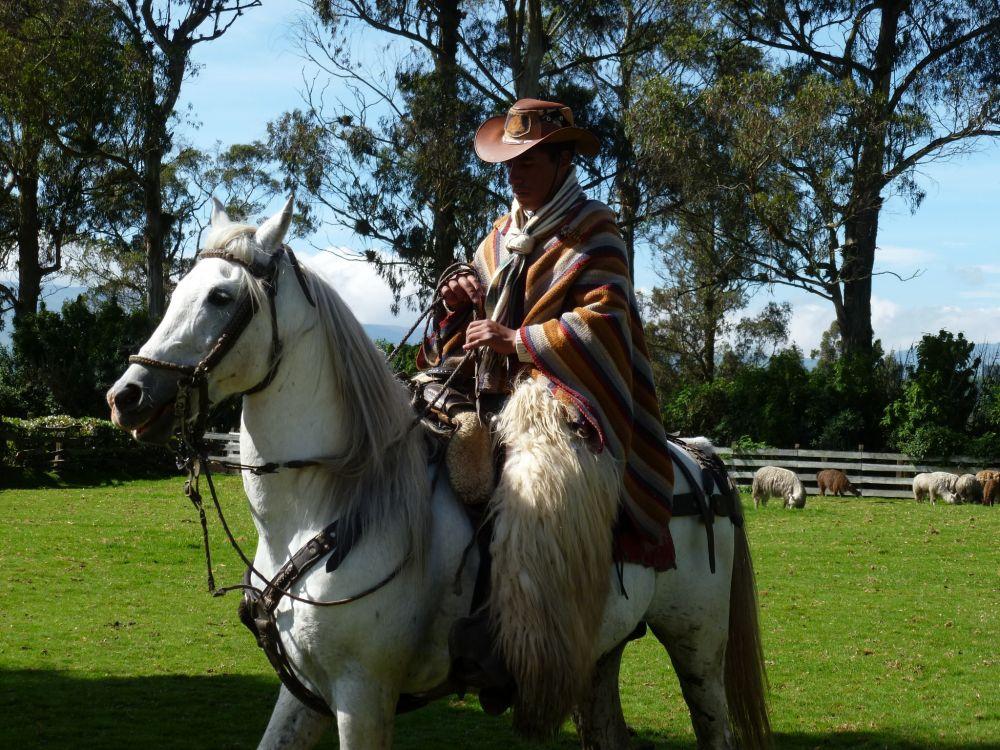 """A """"Chagra"""", an Andean cowboy"""