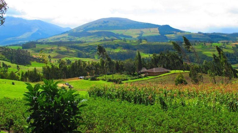 Andean Landscape near Hacienda Zuleta