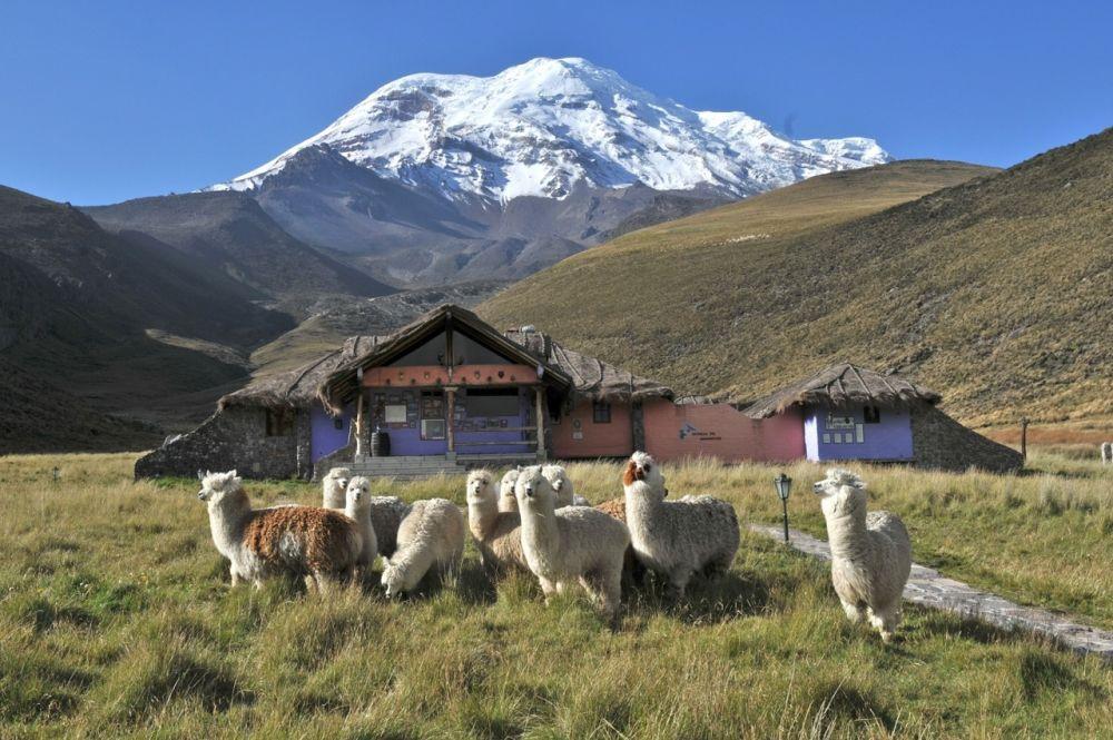 Estrella del Chimborazo Lodge