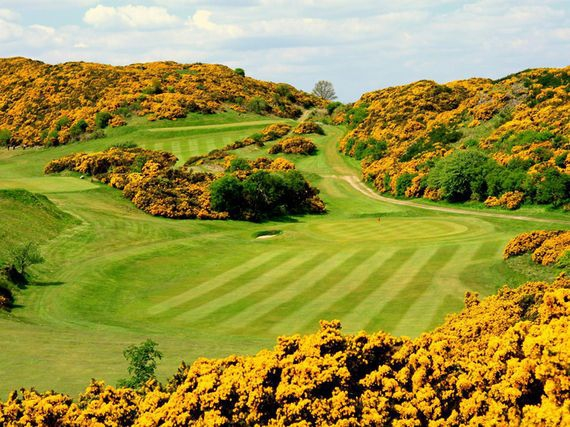 The Gorse at the Braid Hills Golf Course